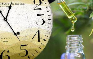 Účinky CBD – Ako dlho trvá, kým začne CBD pôsobiť?