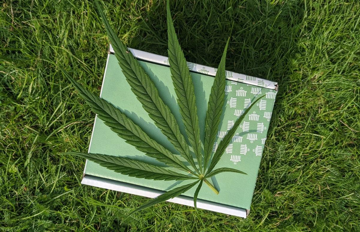 Na tráve leží kniha ako symbol vedomostí a na nej konopný list