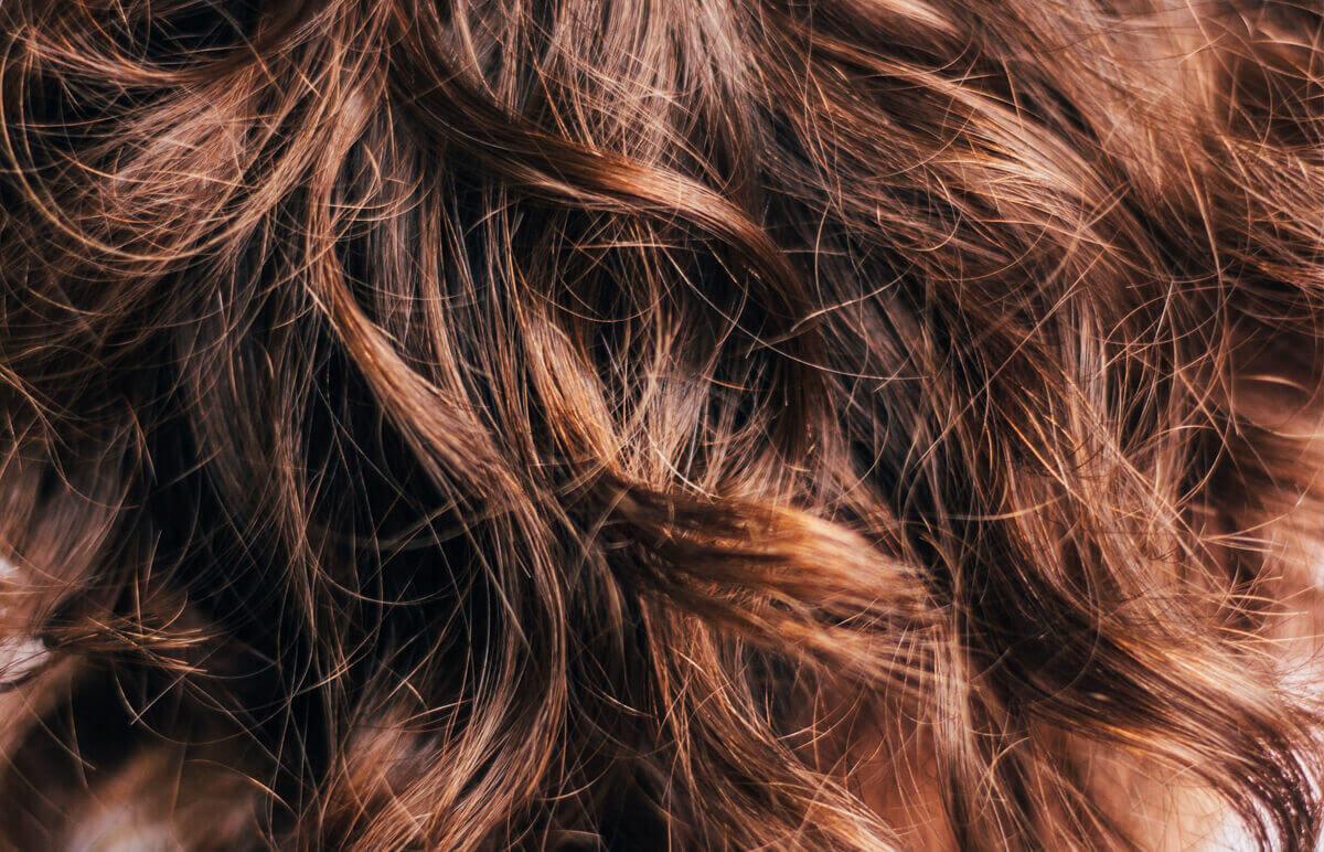Detail krásnych zdravých vlasov